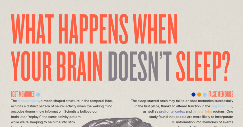 What Happens When Your Brain Doesn't Sleep? (Infographic)