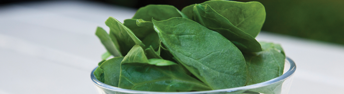 Spinach Salad Campagnarde-Style