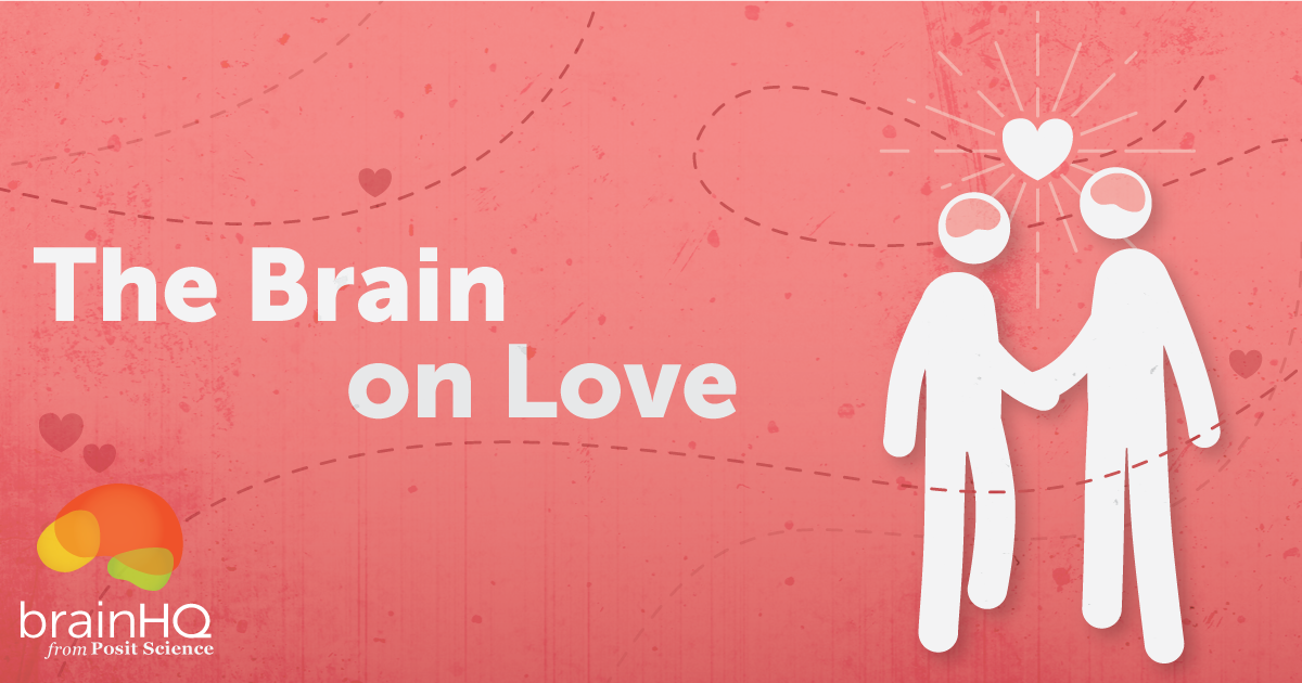 The Brain on Love